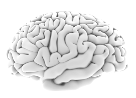 Transforming the Experience-Based Brain